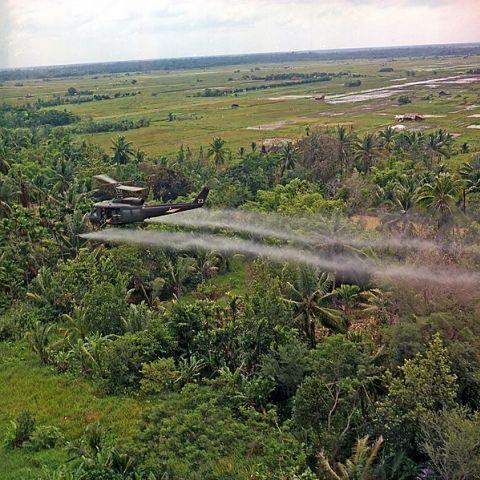 Der Vietnamkrieg 1950-1975
