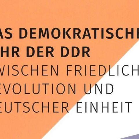Das demokratische Jahr der DDR. Zwischen Friedlicher Revolution und deutscher Einheit